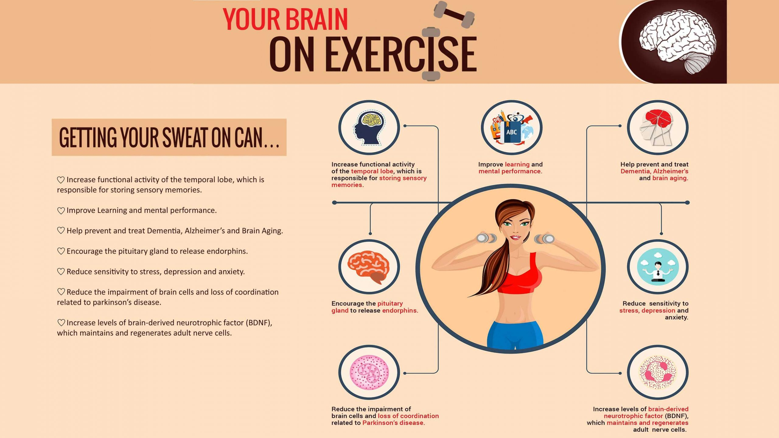 YourBrainOnExercise